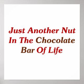 Apenas otra nuez en la barra de chocolate de la vi póster