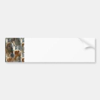 Apenas pegatina para el parachoques de los Appaloo Etiqueta De Parachoque