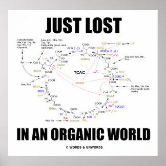 Apenas perdido en un mundo orgánico (ciclo de Kreb Impresiones