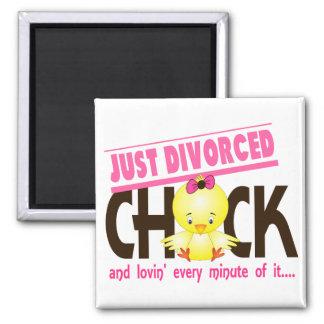 Apenas polluelo divorciado imán cuadrado