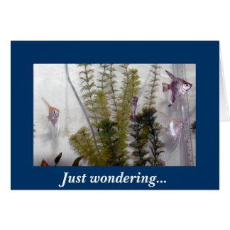 Apenas preguntándose… tarjeta de felicitación