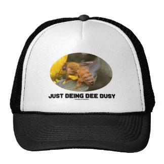 Apenas siendo abeja ocupada (abeja en la flor amar gorros bordados