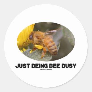 Apenas siendo abeja ocupada (abeja en la flor pegatina redonda