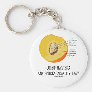 Apenas teniendo otro día amelocotonado (anatomía d llavero redondo tipo pin