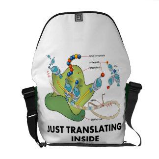 Apenas traduciendo el interior (síntesis de la bolsa de mensajeria