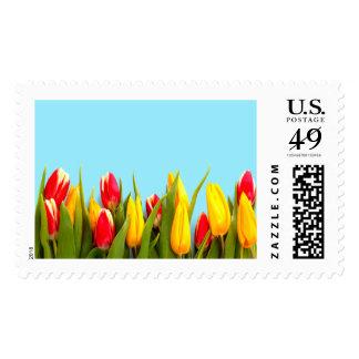 Apenas tulipanes grandes sello