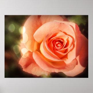 Apenas un color de rosa póster