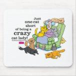 Apenas un cortocircuito del gato de ser una señora tapete de ratón