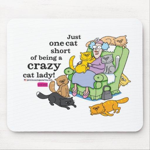 Apenas un cortocircuito del gato de ser una señora tapetes de ratón