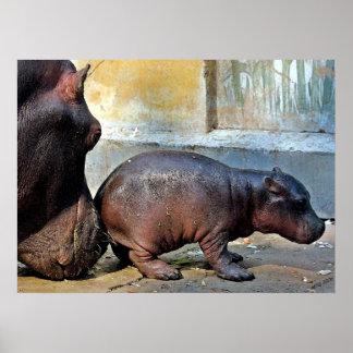 Apenas un poco retrato del Hippopotamus del codazo Impresiones