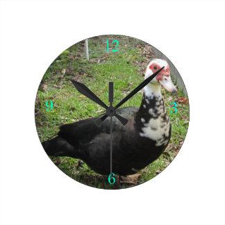 Apenas un Qwack a tiempo Reloj Redondo Mediano