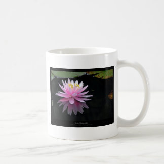 Apenas una flor - flor 017 de Waterlily Tazas De Café