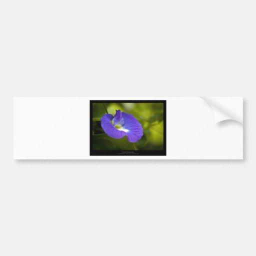 Apenas una flor - flor azul 006 etiqueta de parachoque