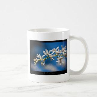 Apenas una flor - flor blanca 004 tazas