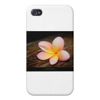 Apenas una flor - flor simple 003 iPhone 4 carcasa