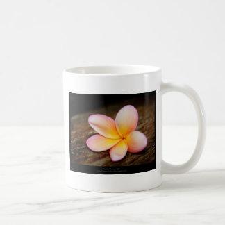 Apenas una flor - flor simple 003 tazas de café
