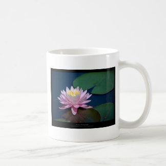 Apenas una flor - pique waterlily la flor 008 tazas