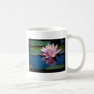 Apenas una flor - pique waterlily la flor 009 tazas de café