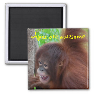 Apes are Awesome 2 Inch Square Magnet
