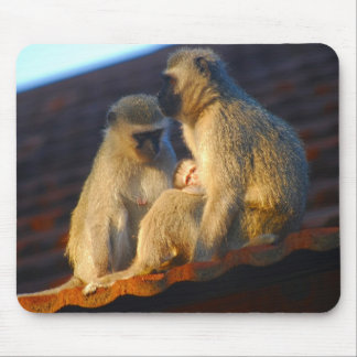Apes family moments mouse pads
