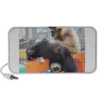 APES Goods for Good Gibbon Speakers