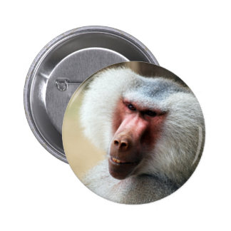 Apes Howdy 2 Inch Round Button