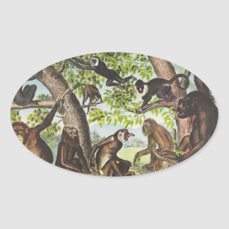 Apes & Primates Oval Sticker