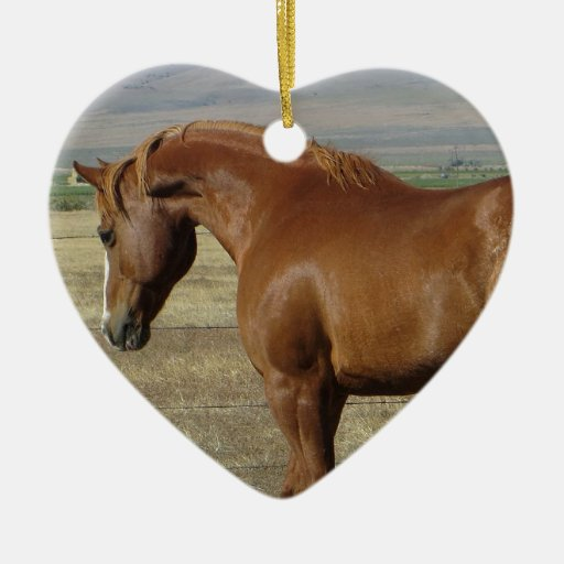 "APHA ""Skips Barta"" Double-Sided Heart Ceramic Christmas Ornament"