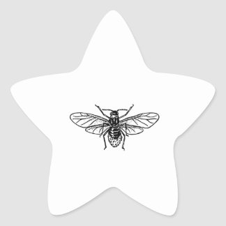 Aphid Star Sticker