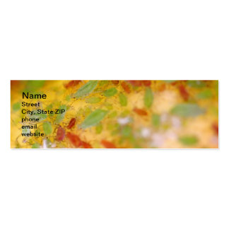 Aphids Business Card