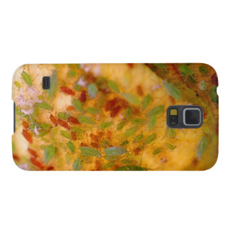 Aphids Infestation Galaxy S5 Case