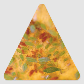 Aphids Infestation Triangle Sticker