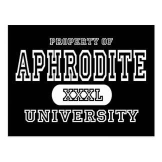 Aphrodite Univeristy Dark Postcard