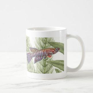 Aphyosemion elberti Killifish double image Mug
