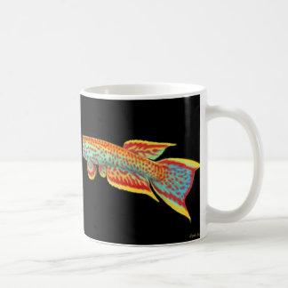 Aphyosemion Killifish Mug
