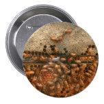 Apiary - Bee's - Sweet success Pin