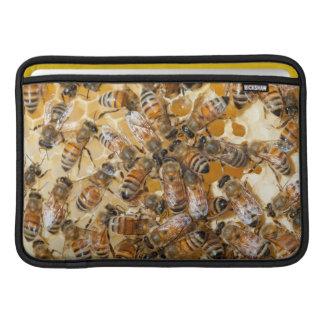 Apicultura en la granja de la miel de Arlo Funda Para Macbook Air