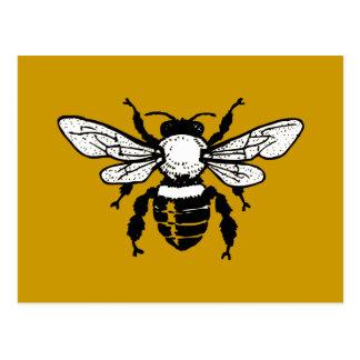 Apis Mellifera Honeybee Postcard