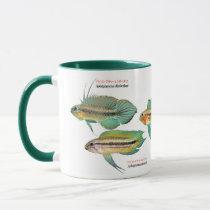 Apistgramma Mug