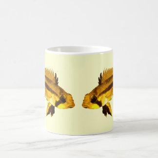 Apistogrammas Dwarf Cichlid Coffee Mug