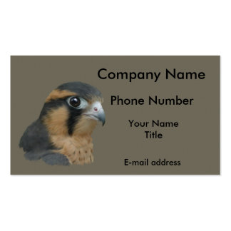 Aplomado Business Card