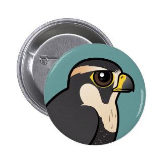 Aplomado Falcon Pinback Button