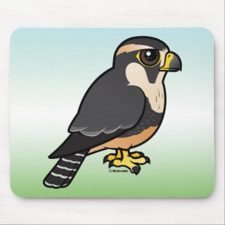 Aplomado Falcon Mouse Pad