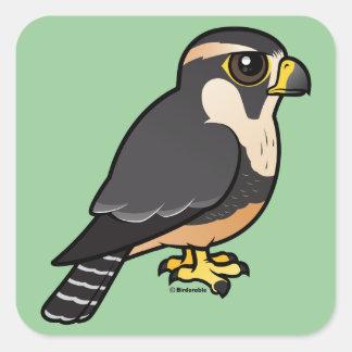 Aplomado Falcon Square Sticker