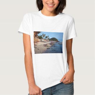 Apo Island beach Shirts