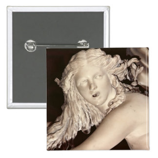 Apollo and Daphne detail of Daphne s head Button