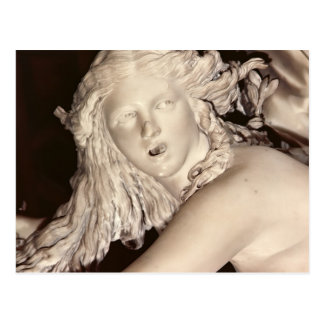 Apollo and Daphne, detail of Daphne's head Postcard