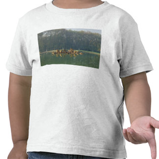Apollo in his Chariot, from the Bassin Tee Shirts