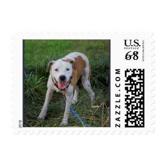 Apollo the Rescue Postage Stamp