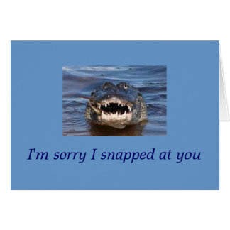 apology greeting cards